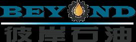 山东彼岸石油装备有限公司